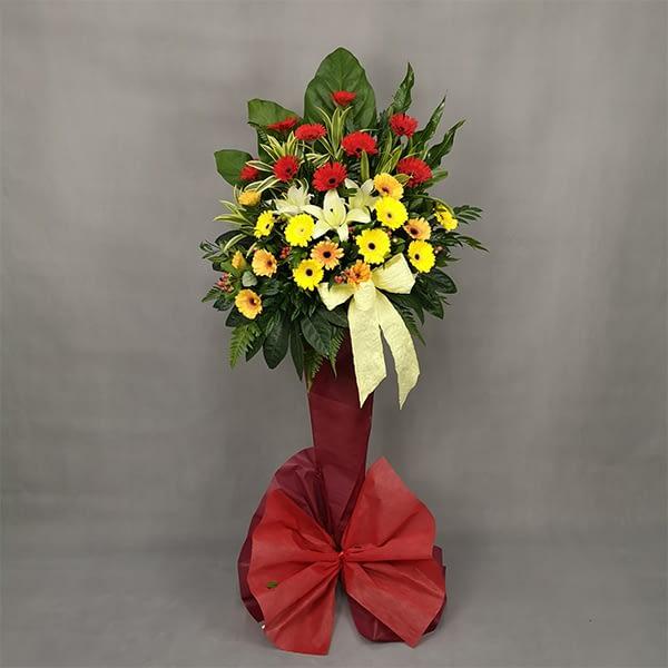opening flowers