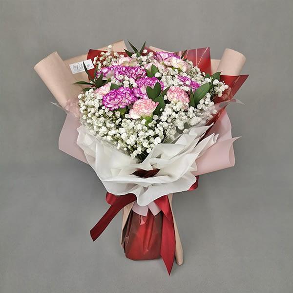 HB170 12 carnation